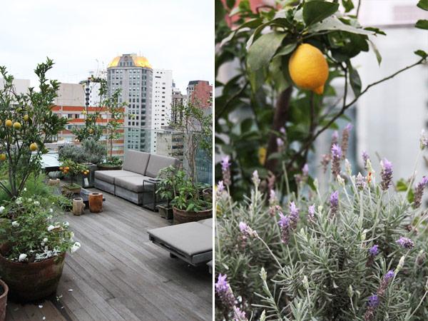 terraco jardim detalhe:terraco-apartamento-jardim-nani-chinellato-08