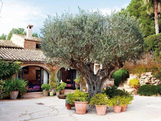 jardin-de-inspiracion-toscana_ampliacion